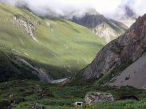 Paysage de l'Himalaya élevé avec des yaks Photo stock