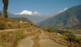 Paysage de l'Himalaya Image stock