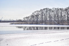 Paysage de l'hiver Image libre de droits