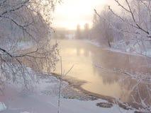 Paysage de l'hiver Photos libres de droits