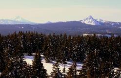 Paysage de l'hiver de région sauvage Photographie stock