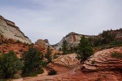 Paysage de l'Utah de canyon de Zion image libre de droits