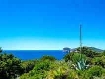 Paysage de la côte du capo Caccia, en Sardaigne photo stock