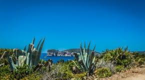 Paysage de la côte du capo Caccia, en Sardaigne images stock