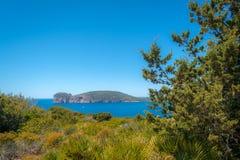 Paysage de la côte du capo Caccia, en Sardaigne photographie stock libre de droits