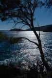 Paysage de la Côte d'Azur photographie stock libre de droits