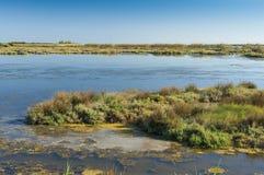 Paysage de la lagune à la rivière de delta de PO, Italie Photos stock