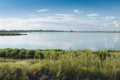 Paysage de la lagune au parc national de rivière de delta de PO, AIE Photographie stock libre de droits