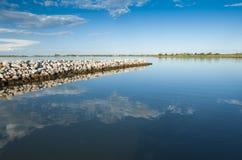 Paysage de la lagune au parc national de rivière de delta de PO, AIE Photos libres de droits