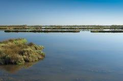 Paysage de la lagune au parc national de rivière de delta de PO, AIE Images libres de droits