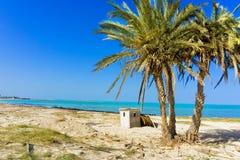 Paysage de la mer M?diterran?e avec des palmiers dans Djerba, Tunisie photographie stock libre de droits