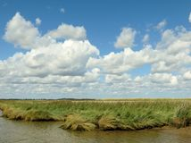 Paysage de la Norfolk Broads Photographie stock libre de droits