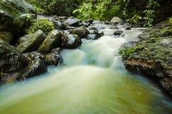 Paysage de la rivière avec des roches dans la jungle photo stock