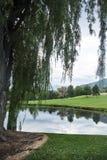 Paysage de lac et d'arbre Photos stock