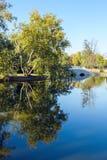 Paysage de lac Herastrau image libre de droits