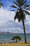 Paysage de Lake Havasu Photos stock