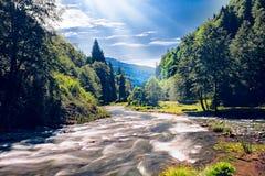Paysage de lit de rivière Photos stock