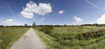 Paysage de marais Photo libre de droits