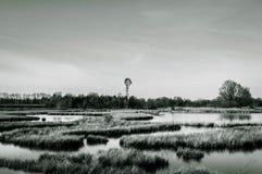 Paysage de marais avec le moulin à vent Photographie stock libre de droits