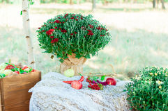 Paysage de mariage Images stock