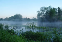 Paysage de matin avec le brouillard sur la rivière Image stock