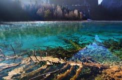 Paysage de matin de Jiuzhaigou le beau Photo stock