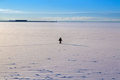 Paysage de mer d'hiver de matin Images stock