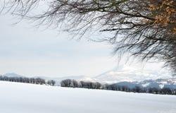 Paysage de Milou, comté Wicklow, Irlande image libre de droits