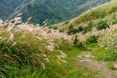 Paysage de montagne à Taïpeh photographie stock libre de droits