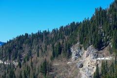 Paysage de montagne avec la forêt colorée et les crêtes couronnées de neige élevées jour étonnant de montagnes de Caucase du beau Image stock