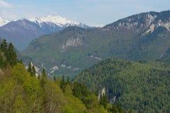 Paysage de montagne avec la forêt colorée et les crêtes couronnées de neige élevées jour étonnant de montagnes de Caucase du beau Photo libre de droits