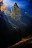 Paysage de montagne avec le brouillard de matin d'automne au lever de soleil - Fundatur Images stock