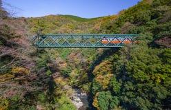 Paysage de montagne avec le pont et le train de chemin de fer Photos stock