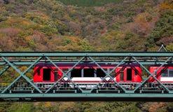 Paysage de montagne avec le pont et le train de chemin de fer Image libre de droits