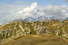 Paysage de montagne avec un cheval de pâturage seul images libres de droits