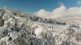 Paysage de montagne de calme d'hiver avec de beaux arbres se givrants projectile Vue supérieure du paysage accidenté en hiver clips vidéos