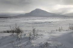 Paysage de montagne d'hiver Images stock