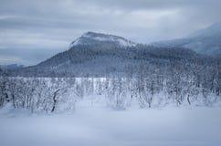 Paysage de montagne d'hiver Photos libres de droits