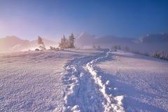 Paysage de montagne d'hiver avec le fotpath le matin neigeux Photos libres de droits
