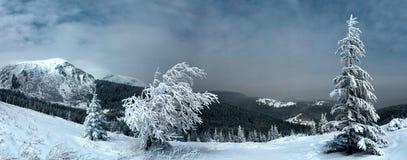 Paysage de montagne d'hiver de nuit dans le clair de lune de pleine lune Photographie stock