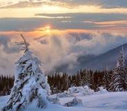 Paysage de montagne d'hiver de lever de soleil carpathien photographie stock