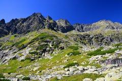 Paysage de montagne dans Carpathiens occidentaux Photo libre de droits