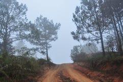 Paysage de montagne dans Dalat, Vietnam Photographie stock