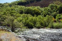 Paysage de montagne dans les balises de Brecon du Pays de Galles Photo libre de droits