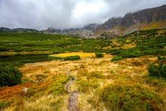 Paysage de montagne dans un jour nuageux photos libres de droits