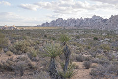 Paysage de montagne de désert Images libres de droits