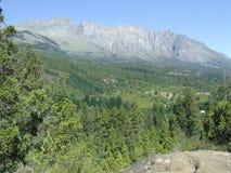 Paysage de montagne de forêt Photo stock