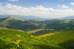 Paysage de montagne de forêt Carpathien, Ukraine image stock