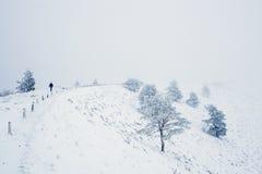 Paysage de montagne de neige pendant l'hiver Photos stock