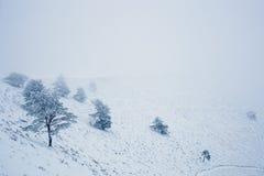 Paysage de montagne de neige pendant l'hiver Photographie stock